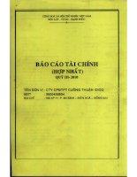 Báo cáo tài chính hợp nhất quý 3 năm 2010 - Công ty Cổ phần Đầu tư Phát triển Cường Thuận IDICO