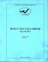 Báo cáo tài chính quý 2 năm 2012 - Công ty Cổ phần Việt An