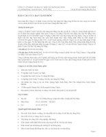 Báo cáo tài chính quý 2 năm 2012 (đã soát xét) - Công ty Cổ phần VICEM Vật liệu Xây dựng Đà Nẵng