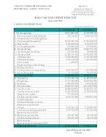 Báo cáo tài chính quý 1 năm 2009 - Công ty Cổ phần Bê tông Hoà Cầm - Intimex