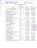 Báo cáo tài chính quý 4 năm 2012 - Công ty Cổ phần Chứng khoán Đại Việt