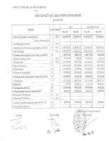 Báo cáo tài chính quý 1 năm 2013 - Công ty Cổ phần Xuất nhập khẩu Lâm Thủy sản Bến Tre