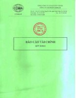Báo cáo tài chính quý 2 năm 2011 - Công ty Cổ phần COMA18