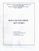 Báo cáo tài chính quý 1 năm 2013 - Công ty Cổ phần Đầu tư Thương mại Bất động sản An Dương Thảo Điền