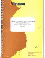 Báo cáo tài chính quý 2 năm 2014 (đã soát xét) - Công ty cổ phần Gạch Ngói Gốm Xây dựng Mỹ Xuân