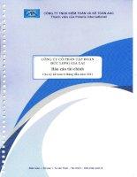 Báo cáo tài chính công ty mẹ quý 2 năm 2011 (đã soát xét) - Công ty Cổ phần Tập đoàn Đức Long Gia Lai