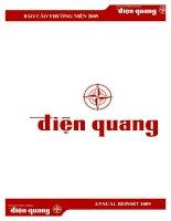 Báo cáo thường niên năm 2009 - Công ty Cổ phần Bóng đèn Điện Quang