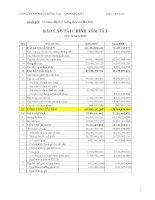 Báo cáo tài chính quý 2 năm 2009 - Công ty Cổ phần Nhựa Đồng Nai