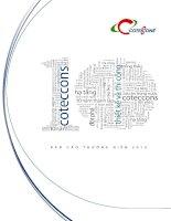 Báo cáo thường niên năm 2014 - Công ty Cổ phần Xây dựng Cotec