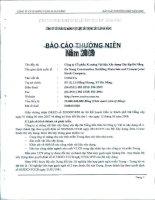 Báo cáo thường niên năm 2009 - Công ty Cổ phần VICEM Vật liệu Xây dựng Đà Nẵng