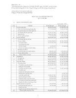 Báo cáo tài chính quý 4 năm 2009 - Công ty cổ phần VICEM Bao bì Bút Sơn