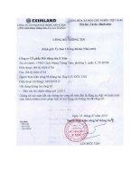 Báo cáo tài chính công ty mẹ quý 2 năm 2013 - Công ty cổ phần Bất động sản E Xim