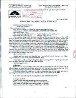 Báo cáo thường niên năm 2012 - Công ty Cổ phần Gạch men Chang Yih