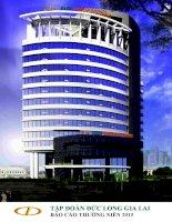 Báo cáo thường niên năm 2015 - Công ty Cổ phần Tập đoàn Đức Long Gia Lai