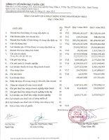 Báo cáo KQKD hợp nhất quý 1 năm 2013 - Công ty Cổ phần Đại Thiên Lộc