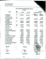 Báo cáo KQKD hợp nhất quý 1 năm 2011 - Công ty Cổ phần Tập đoàn Hà Đô