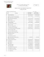 Báo cáo tài chính quý 3 năm 2009 - Công ty Cổ phần Nhựa Đà Nẵng