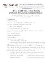 Báo cáo thường niên năm 2012 - Công ty Cổ phần Du lịch Đắk Lắk