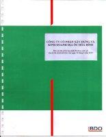 Báo cáo tài chính hợp nhất quý 2 năm 2010 (đã soát xét) - Công ty cổ phần Xây dựng và Kinh doanh Địa ốc Hoà Bình