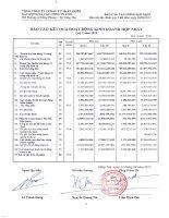 Báo cáo KQKD hợp nhất quý 2 năm 2012 - Tổng Công ty Cổ phần Đầu tư Phát triển Xây dựng