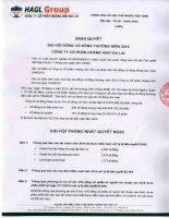 Nghị quyết Đại hội cổ đông thường niên - Công ty Cổ phần Hoàng Anh Gia Lai