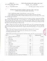 Nghị quyết Đại hội cổ đông thường niên năm 2012 - Công ty Cổ phần Lương thực Đà Nẵng