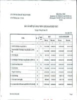 Báo cáo KQKD hợp nhất quý 3 năm 2011 - Công ty cổ phần Đầu tư Hạ tầng Kỹ thuật T.P Hồ Chí Minh