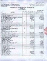 Báo cáo tài chính hợp nhất quý 2 năm 2015 - Ngân hàng Thương mại Cổ phần Xuất nhập khẩu Việt Nam