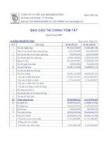 Báo cáo tài chính quý 3 năm 2009 - Công ty Cổ phần Chế tạo Bơm Hải Dương