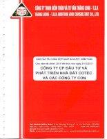 Báo cáo tài chính hợp nhất năm 2011 (đã kiểm toán) - Công ty Cổ phần Đầu tư và Phát triển Nhà đất COTEC