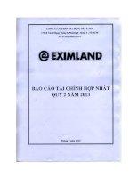 Báo cáo tài chính hợp nhất quý 2 năm 2013 - Công ty cổ phần Bất động sản E Xim