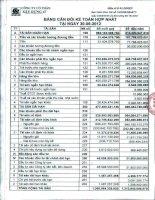 Báo cáo tài chính hợp nhất quý 2 năm 2012 - Công ty Cổ phần Xây dựng 47