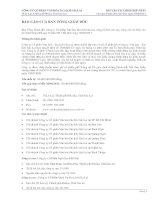 Báo cáo tài chính hợp nhất quý 2 năm 2011 - Công ty cổ phần Gia Lai CTC