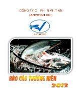Báo cáo thường niên năm 2013 - Công ty Cổ phần Việt An