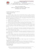 Báo cáo thường niên năm 2010 - CTCP Xi măng La Hiên VVMI
