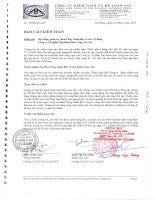 Báo cáo tài chính công ty mẹ năm 2009 (đã kiểm toán) - Công ty Cổ phần Tập đoàn Đức Long Gia Lai