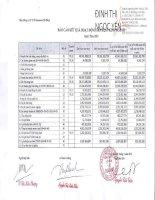 Báo cáo tài chính quý 1 năm 2013 - Tổng Công ty cổ phần Y tế Danameco
