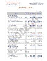 Báo cáo tài chính quý 2 năm 2010 - Công ty Cổ phần Phát triển nhà Bà Rịa-Vũng Tàu