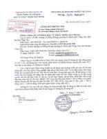 Nghị quyết Hội đồng Quản trị ngày 18-3-2011 - Tổng Công ty Cổ phần Đầu tư Phát triển Xây dựng