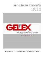 Báo cáo thường niên năm 2015 - Tổng Công ty cổ phần Thiết bị điện Việt Nam