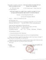Báo cáo tài chính quý 3 năm 2013 - Công ty Cổ phần Cát Lợi