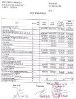 Báo cáo tài chính quý 2 năm 2015 - Công ty Cổ phần Địa ốc 11