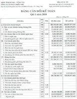 Báo cáo tài chính quý 1 năm 2010 - Công ty Cổ phần Phát triển nhà Bà Rịa-Vũng Tàu