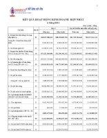 Báo cáo tài chính hợp nhất quý 2 năm 2014 - Công ty Cổ phần Xuất nhập khẩu Y tế Domesco