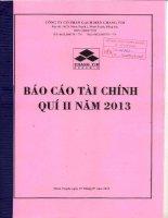 Báo cáo tài chính quý 2 năm 2013 - Công ty Cổ phần Gạch men Chang Yih