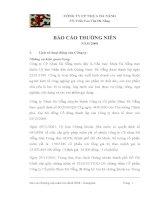 Báo cáo thường niên năm 2008 - Công ty Cổ phần Nhựa Đà Nẵng