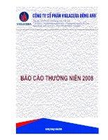 Báo cáo thường niên năm 2008 - Công ty Cổ phần Viglacera Đông Anh