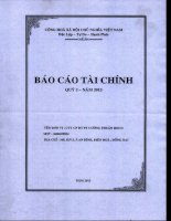 Báo cáo tài chính công ty mẹ quý 2 năm 2013 - Công ty Cổ phần Đầu tư Phát triển Cường Thuận IDICO