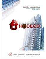 Báo cáo thường niên năm 2008 - Công ty Cổ phần Phát triển nhà Bà Rịa-Vũng Tàu