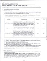 Báo cáo tài chính hợp nhất quý 2 năm 2012 - Công ty cổ phần Kỹ thuật điện Toàn Cầu